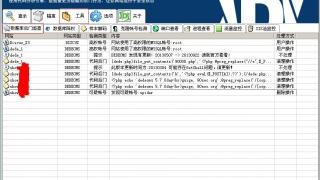 D盾_Web查杀WebShellKill windows平台网站防护软件